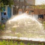 Ein Gruppe von Patienten und Mitarbeitern kümmert sich tagaus und tagein um die Pflege des Gartens, vom Pflanzen und Düngen bis zum Bewässern und Jäten von Unkraut.