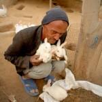 Dieser Mitarbeiter ist für die Hasen zuständig, er füttert sie täglich und reinigt ihr Gehege.